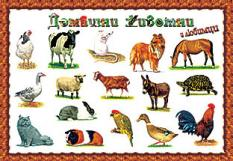 Домашни животни - индивидуално табло
